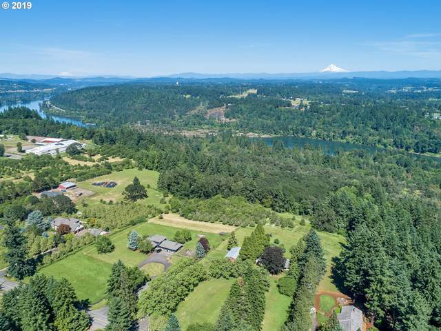 29050 SW Petes Mountain Rd, West Linn, OR 97068 (MLS #19148352) :: The Galand Haas Real Estate Team