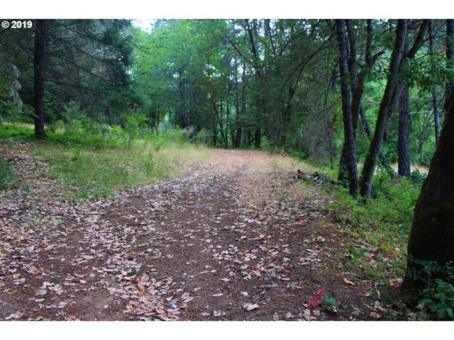 2000 W Jones Creek Rd, Grants Pass, OR 97526 (MLS #19150659) :: Premiere Property Group LLC