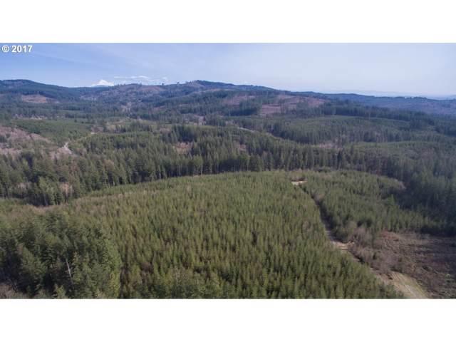 6 NE Boulder Creek Rd, Camas, WA 98607 (MLS #19152389) :: TK Real Estate Group