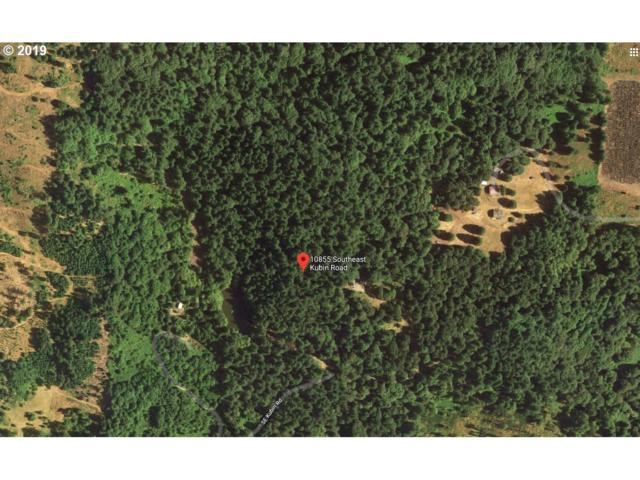 10855 Kubin Rd, Lyons, OR 97358 (MLS #19155506) :: Townsend Jarvis Group Real Estate