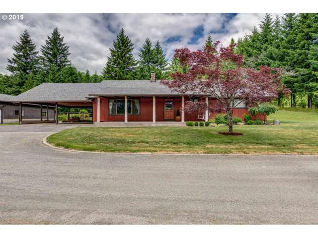 40212 NE 119TH Ave, Amboy, WA 98601 (MLS #19157996) :: Townsend Jarvis Group Real Estate