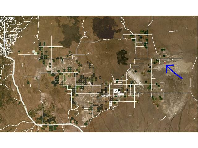 Undetermined Address, Christmas Valley, OR 97641 (MLS #19169011) :: Gustavo Group