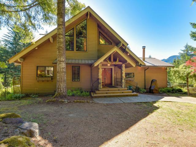 18685 E Aschoff Rd, Rhododendron, OR 97049 (MLS #19176044) :: Brantley Christianson Real Estate