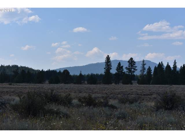 0 Cameron Rd, Beatty, OR 97621 (MLS #19182901) :: Townsend Jarvis Group Real Estate