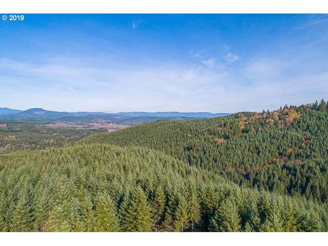 Gold Creek (Off), Willamina, OR 97396 (MLS #19185337) :: The Lynne Gately Team