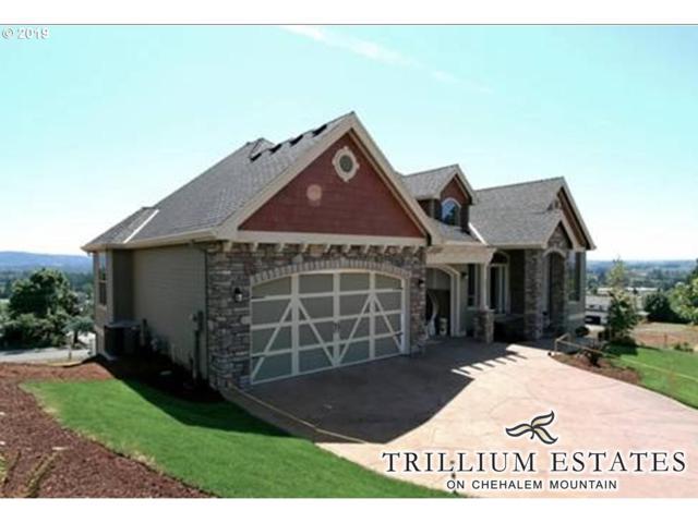 30540 NE Bell Rd, Newberg, OR 97132 (MLS #19189044) :: Fox Real Estate Group