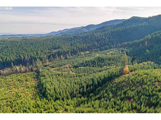 Off Gold Creek, Willamina, OR 97396 (MLS #19191142) :: The Lynne Gately Team