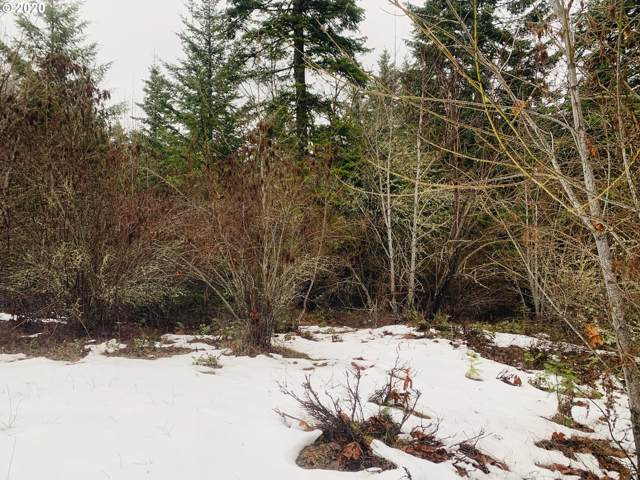 43 Mcvey Rd, Snowden, WA 98602 (MLS #19207011) :: Next Home Realty Connection