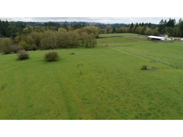 6100 S 20TH Way, Ridgefield, WA 98642 (MLS #19212273) :: Matin Real Estate Group