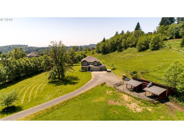 442 White Dog Rd, Washougal, WA 98671 (MLS #19212439) :: Townsend Jarvis Group Real Estate