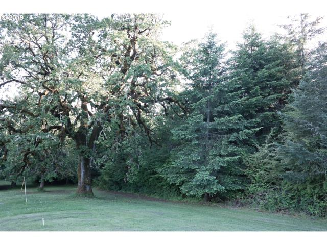 0 NW Puddy Gulch Rd, Yamhill, OR 97148 (MLS #19216174) :: Fox Real Estate Group