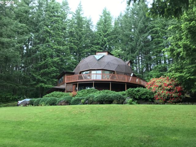 6015 NE 262ND Ave, Vancouver, WA 98682 (MLS #19217688) :: Lucido Global Portland Vancouver