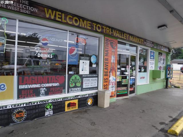 5500 SW Phillomath Blvd, Corvallis, OR 97330 (MLS #19231704) :: Fox Real Estate Group