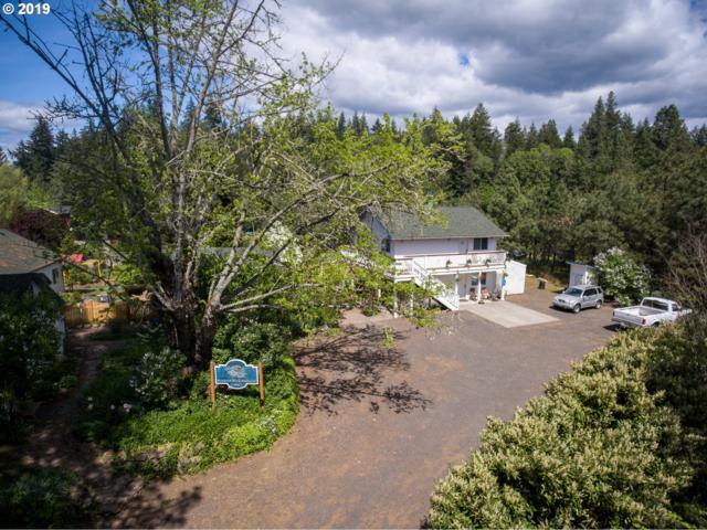 866 Hwy 141, Husum, WA 98623 (MLS #19233781) :: McKillion Real Estate Group
