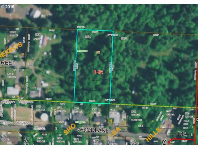 Vl Lyngstad Heights, Astoria, OR 97103 (MLS #19234473) :: The Pacific Group