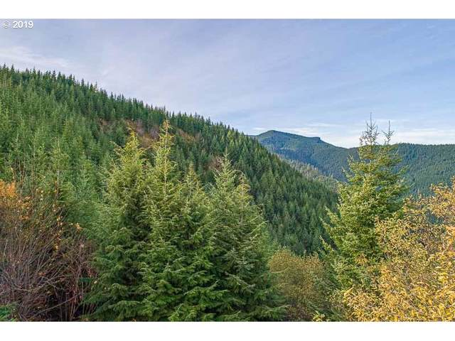 Blm Access, Willamina, OR 97396 (MLS #19234711) :: The Lynne Gately Team