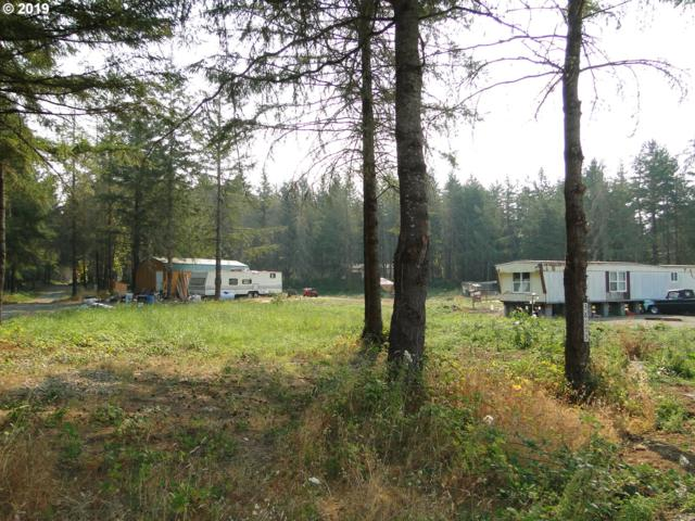 38173 Place Rd, Fall Creek, OR 97438 (MLS #19234741) :: Song Real Estate