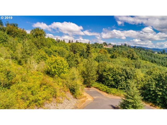 -1 Insel Rd 9&10, Woodland, WA 98674 (MLS #19246181) :: Fox Real Estate Group