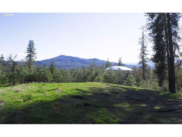 250 Pitchstone Ct, Roseburg, OR 97471 (MLS #19247020) :: Stellar Realty Northwest