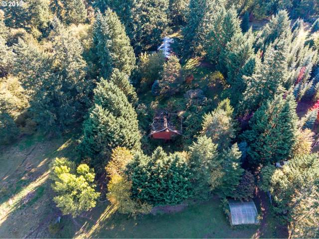 18243 S Bogynski Rd, Oregon City, OR 97045 (MLS #19247708) :: Skoro International Real Estate Group LLC
