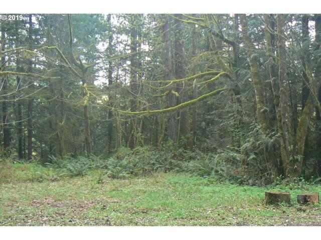 0 Old Pup Creek Rd, Woodland, WA 98674 (MLS #19248778) :: Townsend Jarvis Group Real Estate