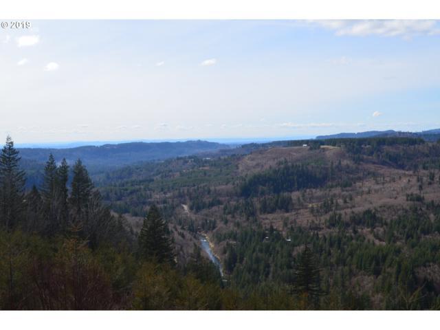 Mabee Mines Rd, Washougal, WA 98671 (MLS #19250362) :: Next Home Realty Connection