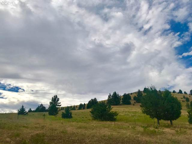 19203 Kinzua Ln, Fossil, OR 97830 (MLS #19256020) :: Townsend Jarvis Group Real Estate