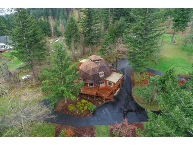 221 Little Rd, Skamania, WA 98648 (MLS #19256186) :: Next Home Realty Connection