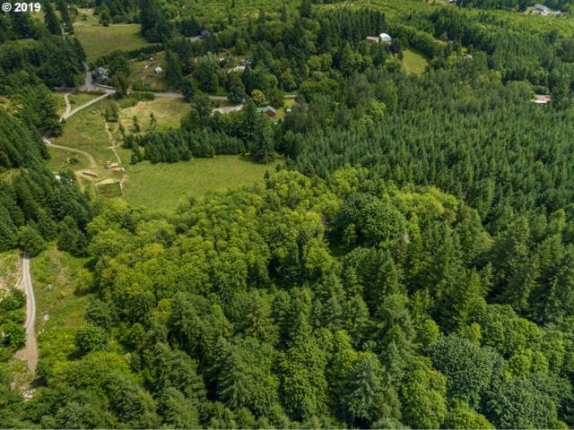 39300 NE Rotschy Rd, Yacolt, WA 98675 (MLS #19256824) :: Song Real Estate