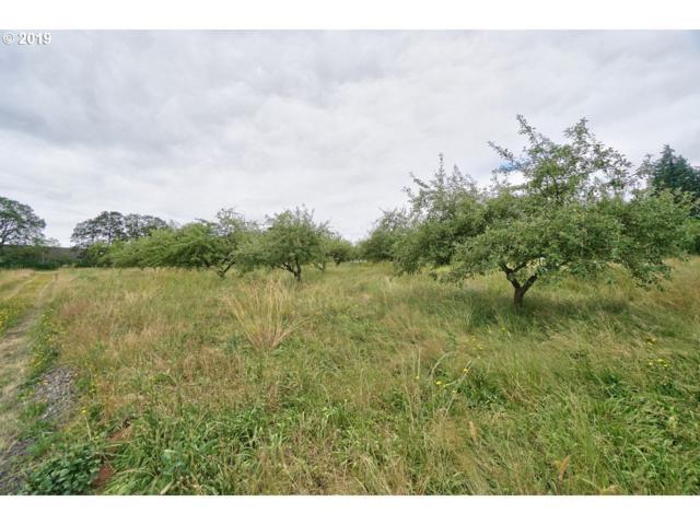 0 Springbrook #4, Newberg, OR 97132 (MLS #19264558) :: Townsend Jarvis Group Real Estate