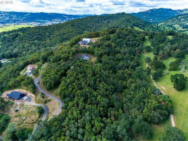 435 Hagle Ln, Roseburg, OR 97470 (MLS #19276303) :: Song Real Estate