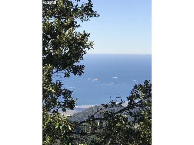 Grizzly Mtn Rd, Gold Beach, OR 97444 (MLS #19293401) :: Premiere Property Group LLC