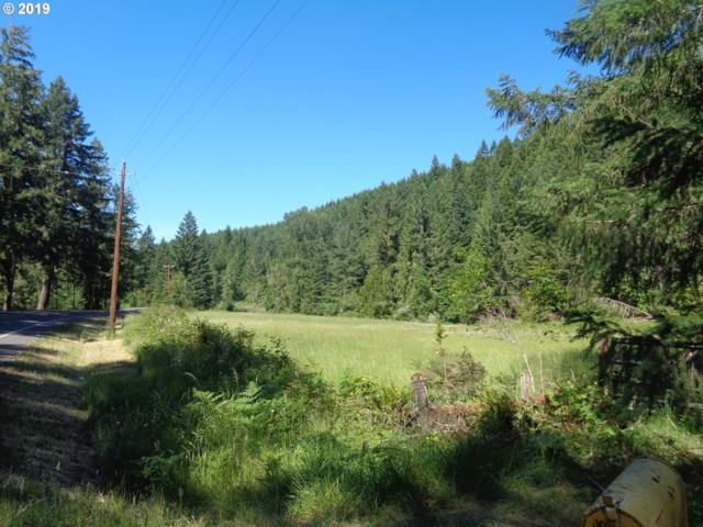 73697 London Rd, Cottage Grove, OR 97424 (MLS #19298910) :: The Lynne Gately Team