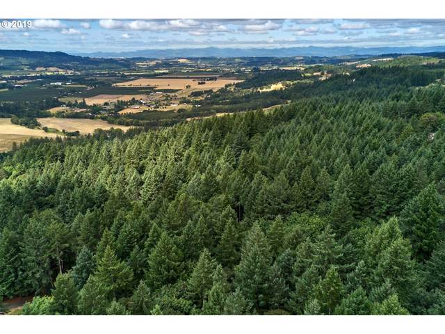 0 Hillsboro Hwy, Newberg, OR 97132 (MLS #19305574) :: Next Home Realty Connection