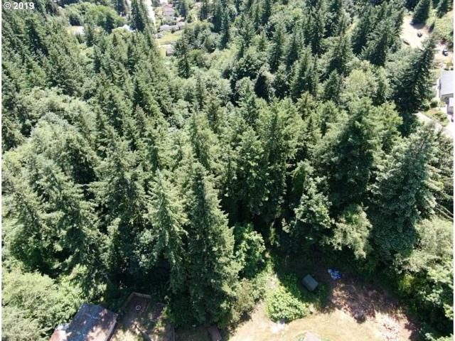 Nw Skyline Drive, Toledo, OR 97391 (MLS #19306437) :: Townsend Jarvis Group Real Estate