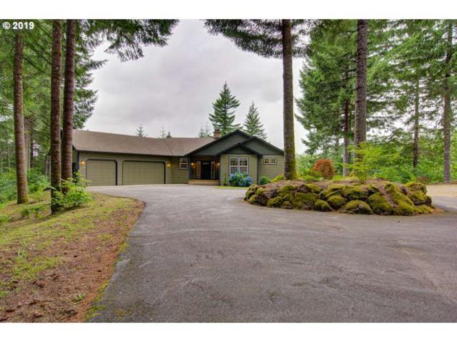 18800 NE 386TH Way, Amboy, WA 98601 (MLS #19316419) :: R&R Properties of Eugene LLC