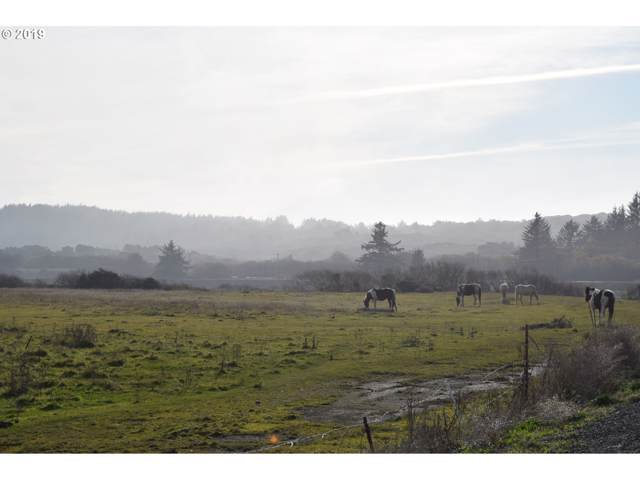N Bank Pistol River Rd #100, Gold Beach, OR 97444 (MLS #19317900) :: Cano Real Estate