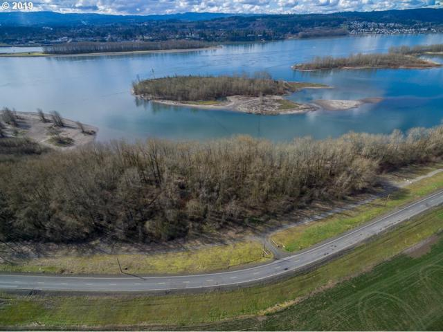 3525 Dike Rd, Woodland, WA 98674 (MLS #19321941) :: TLK Group Properties