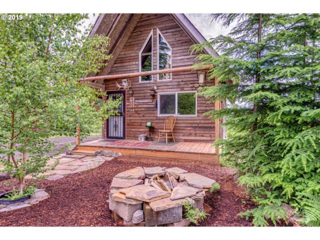 310 Deer Ln, Cougar, WA 98616 (MLS #19324840) :: Realty Edge