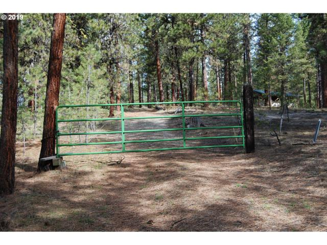 Golden Chariot, Sumpter, OR 97877 (MLS #19325721) :: Townsend Jarvis Group Real Estate