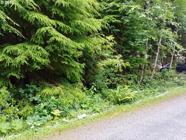 Oceanview Ln, Arch Cape, OR 97102 (MLS #19326458) :: Gustavo Group