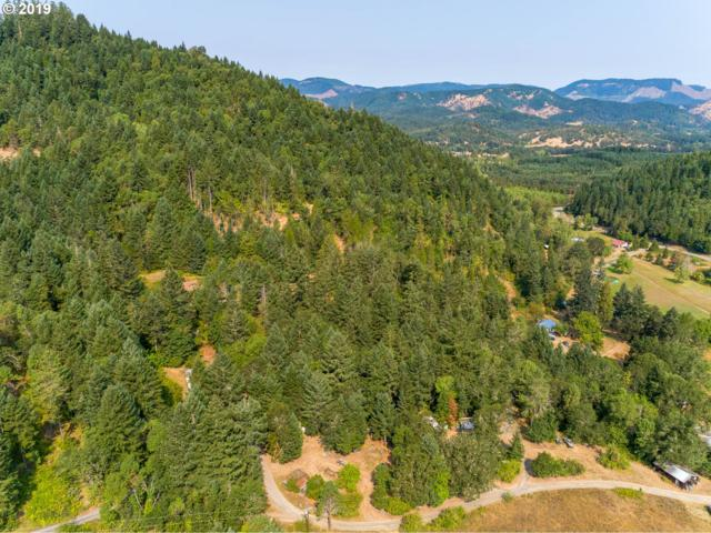 221 Jiggs Ln, Tenmile, OR 97481 (MLS #19326840) :: Matin Real Estate Group