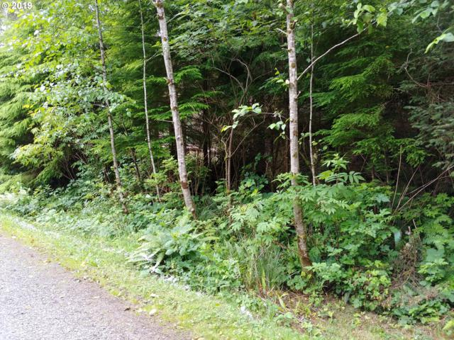 Oceanview Ln, Arch Cape, OR 97102 (MLS #19328276) :: Change Realty