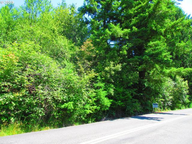 Warren 20468 Rd, Rainier, OR 97048 (MLS #19328918) :: Brantley Christianson Real Estate