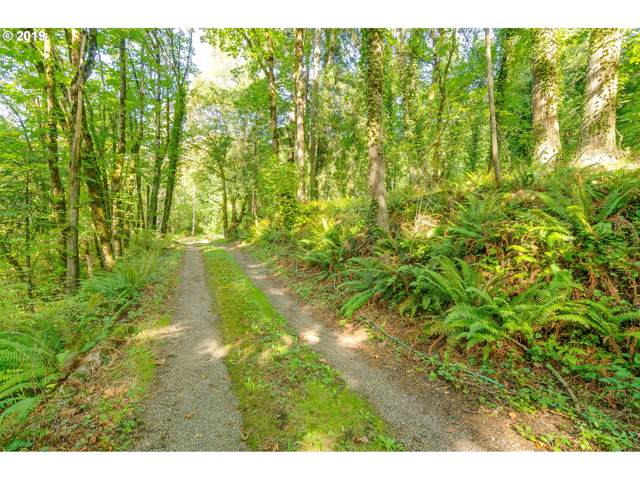 38013 NW 59th Ave, Woodland, WA 98674 (MLS #19329885) :: Fox Real Estate Group