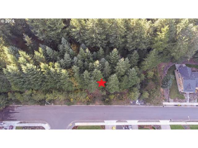 370 Boulder Ridge Dr, Sweet Home, OR 97386 (MLS #19330134) :: Townsend Jarvis Group Real Estate