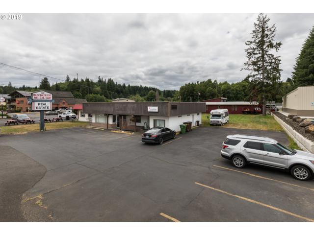 315 E Columbia River Hwy, Clatskanie, OR 97016 (MLS #19332460) :: Homehelper Consultants