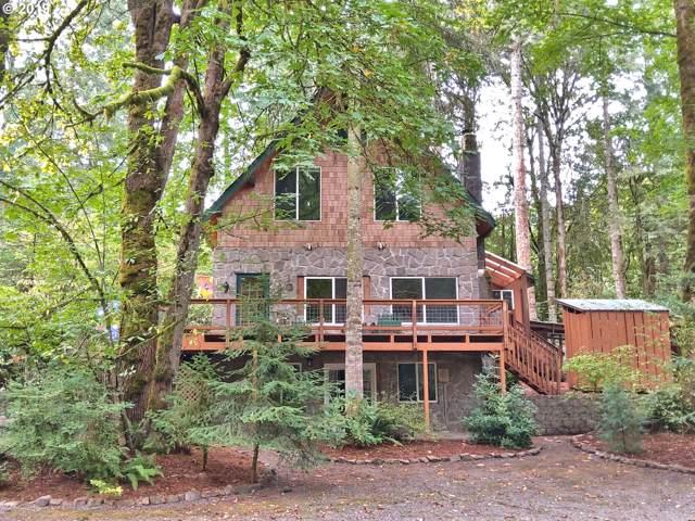 39207 NE Jenny Creek Rd, Woodland, WA 98674 (MLS #19340095) :: Next Home Realty Connection