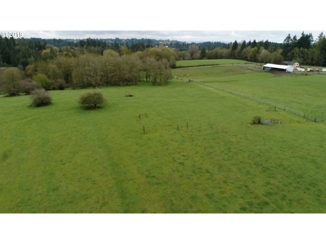 6100 S 20TH Way, Ridgefield, WA 98642 (MLS #19340777) :: Matin Real Estate Group