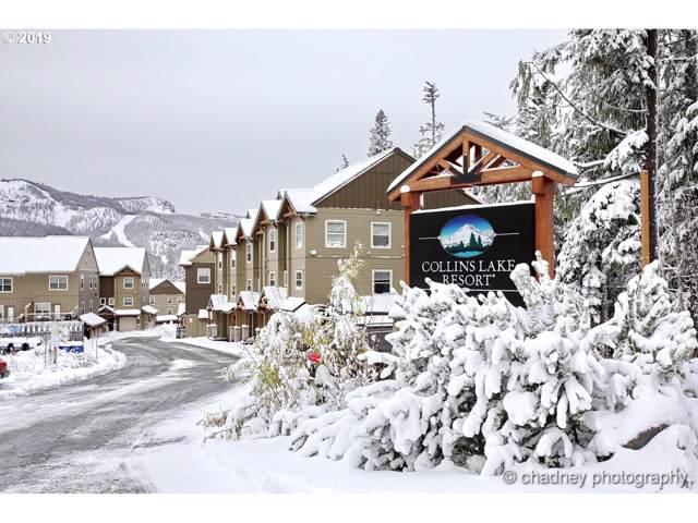 30594 E Ski Bowl Way I-133, Government Camp, OR 97028 (MLS #19346144) :: Stellar Realty Northwest